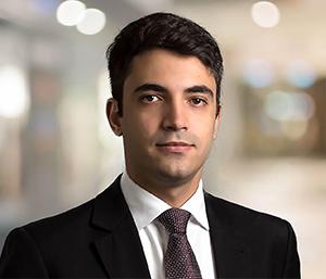 Luís Felipe Bernardes Dib